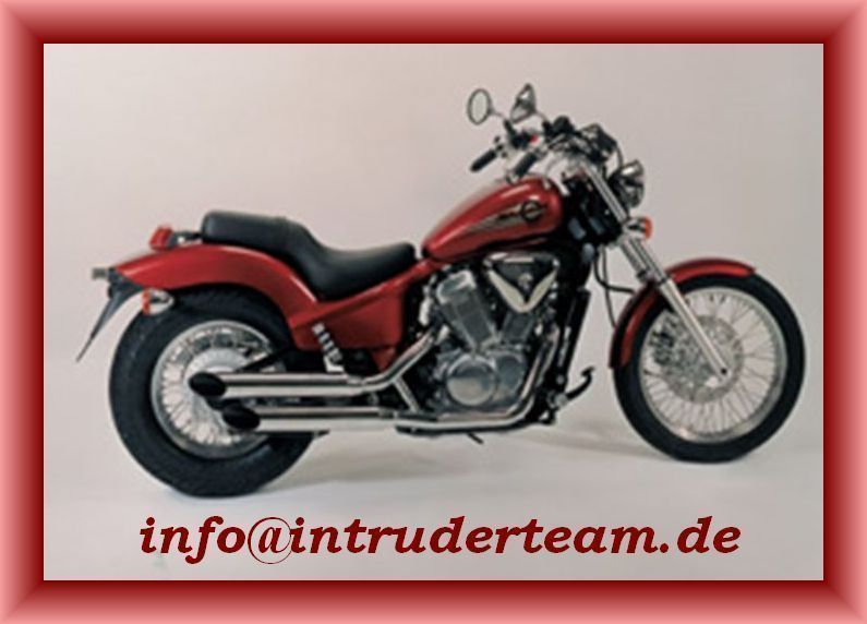 Auspuffanlage Exhaust System Legal Honda VT600C  VLX